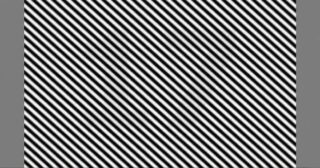 Optical illusion: There is a multi-digit number hidden in the image. Can you see it?